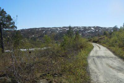 veg-nordmarka